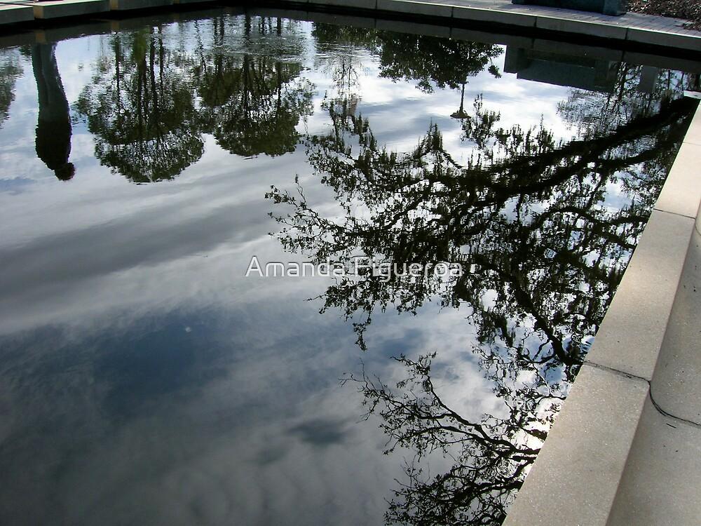 Pool by Amanda Figueroa