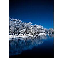 Blue Enchantment Photographic Print