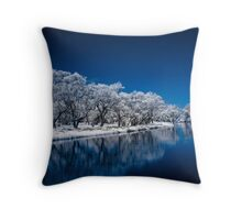 Blue Enchantment Throw Pillow