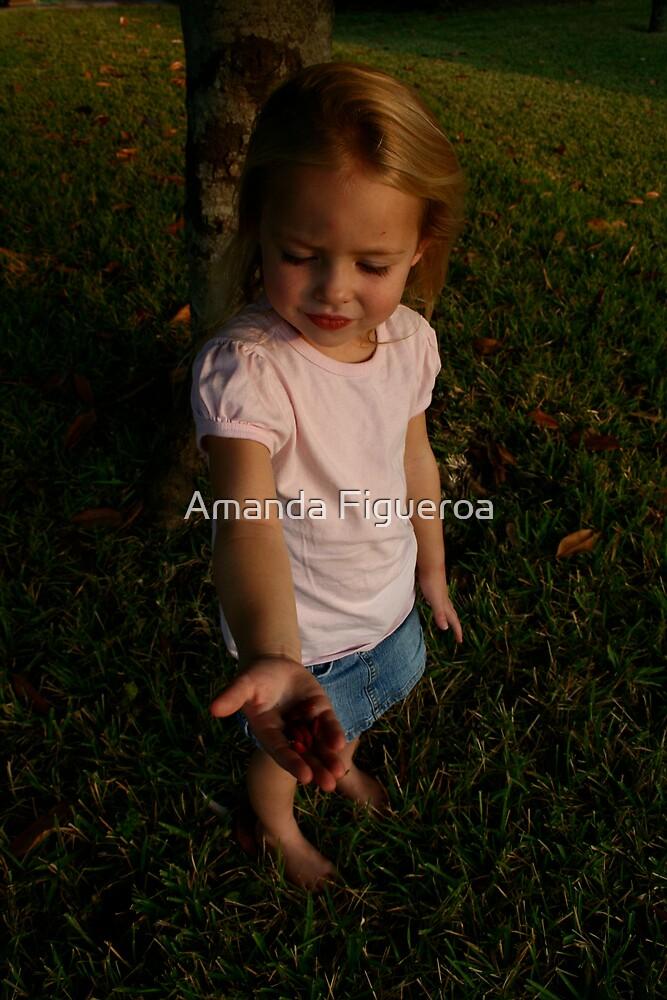 Red seeds by Amanda Figueroa