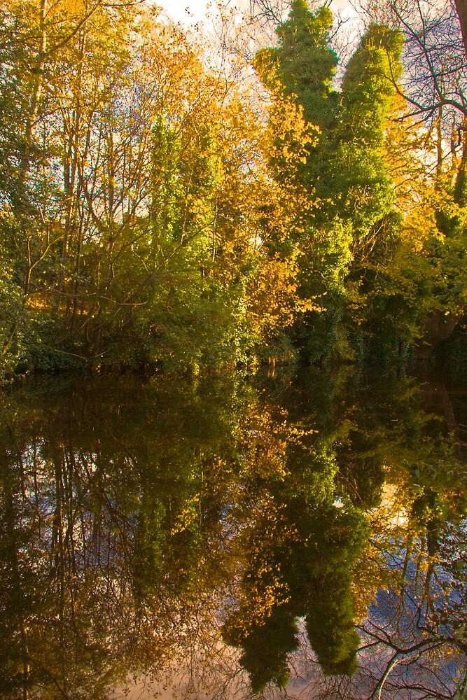 Autumns Last Breath by Chris Clark