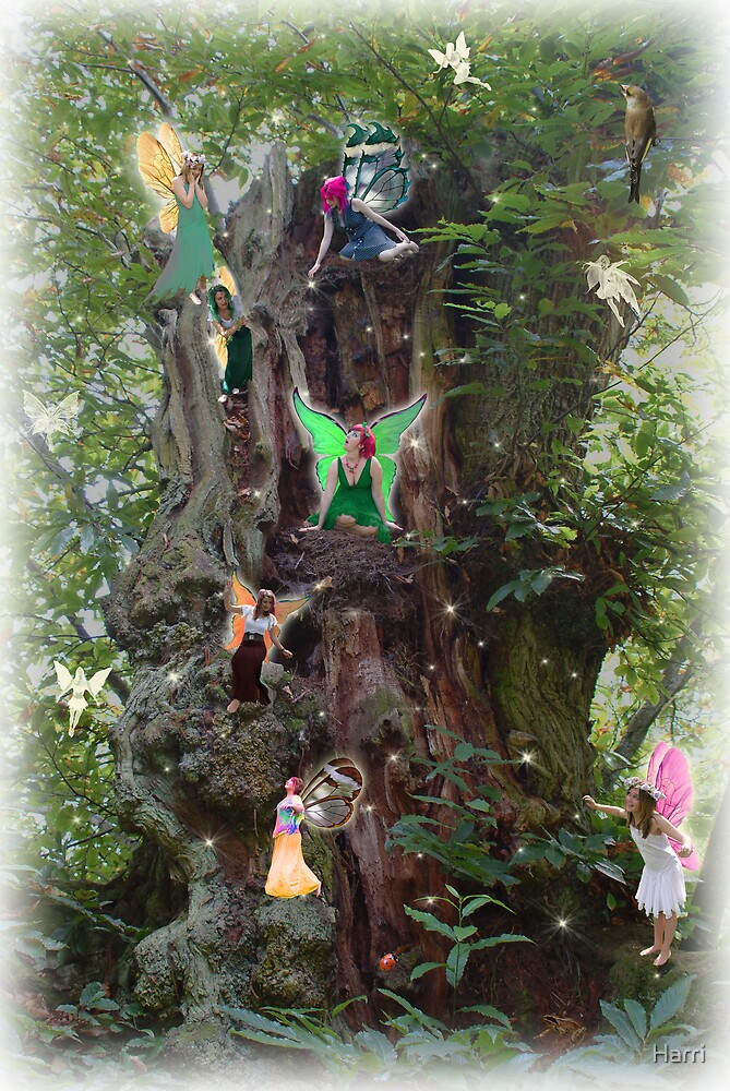 Dave's Gnarly Tree by Harri