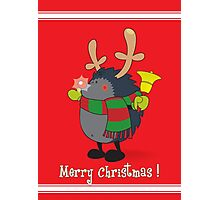 Rudolph the Red Nosed Hedgehog wishes You a Merry Christmas! Photographic Print