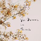 Dreams In French by ALICIABOCK