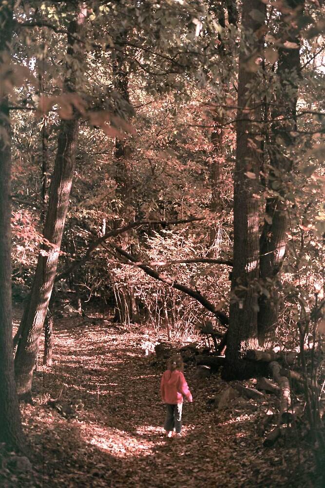 Walking the Appalachian Trail by mkpshay
