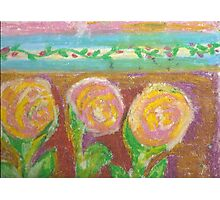 three pink and yellow roses  Photographic Print