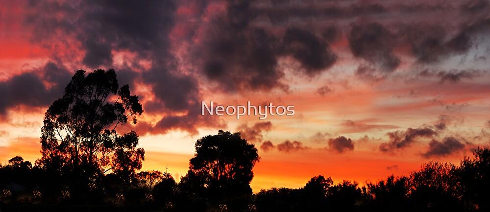 Autumn wind by Neophytos