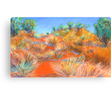 Grasses at Katatjuta Canvas Print