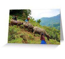 Joyful Children VII - Sa Pa, Vietnam. Greeting Card