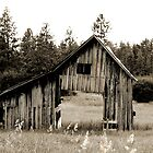 Wild West Barn by Carolyn  Farmer