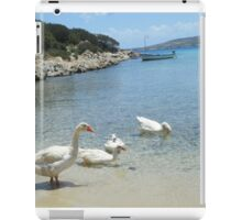 Greek Island Geese in Lipsi iPad Case/Skin