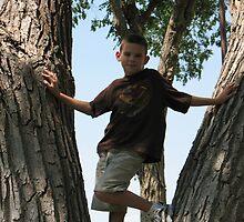 Monkey in a tree by Shawna Faul