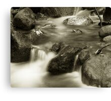 Brandy Creek1 Canvas Print