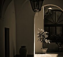Italian Courtyard by Caimin Jones