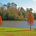 Bowood Lake by RedHillDigital