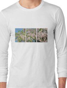 Scale2-Sakura TEE Long Sleeve T-Shirt