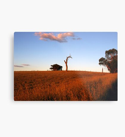 Sunburnt Australia Metal Print