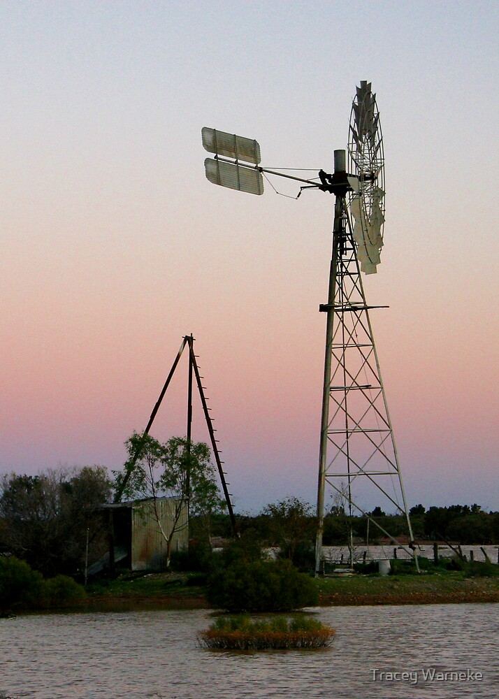 Windmill at Chancers Swamp by Tracey Warneke