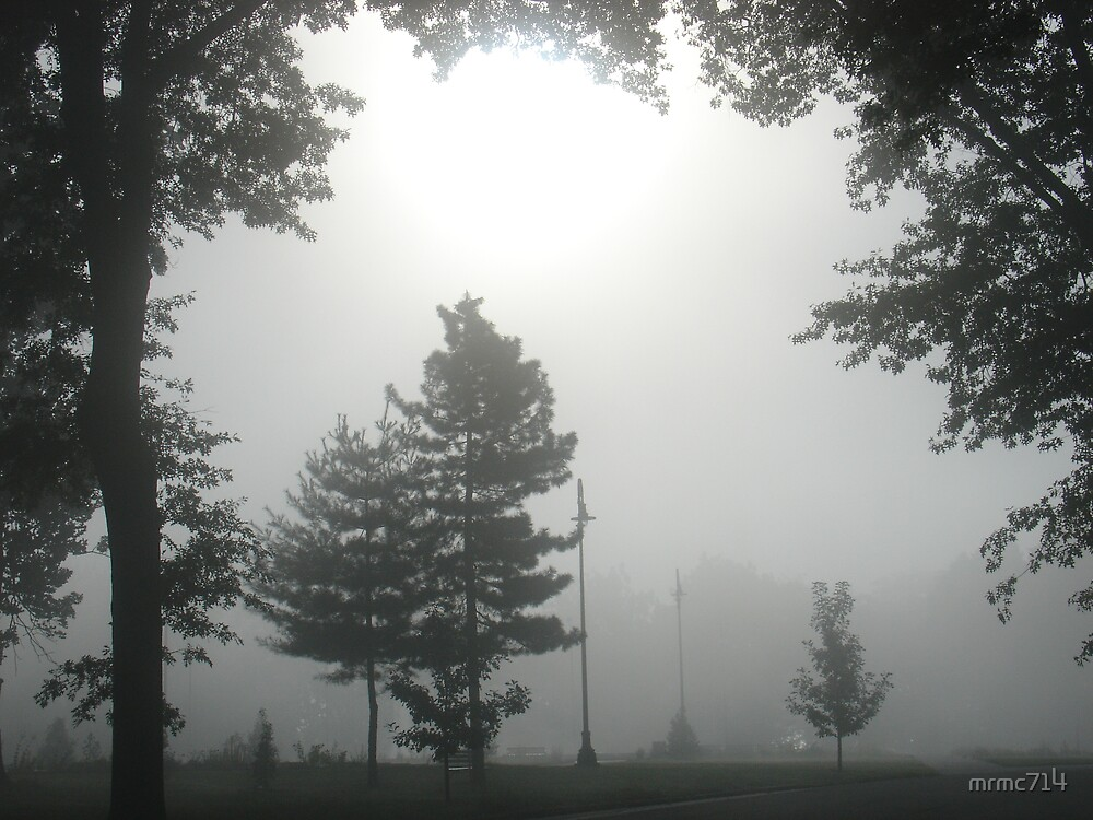 hgld park fog 2 by mrmc714