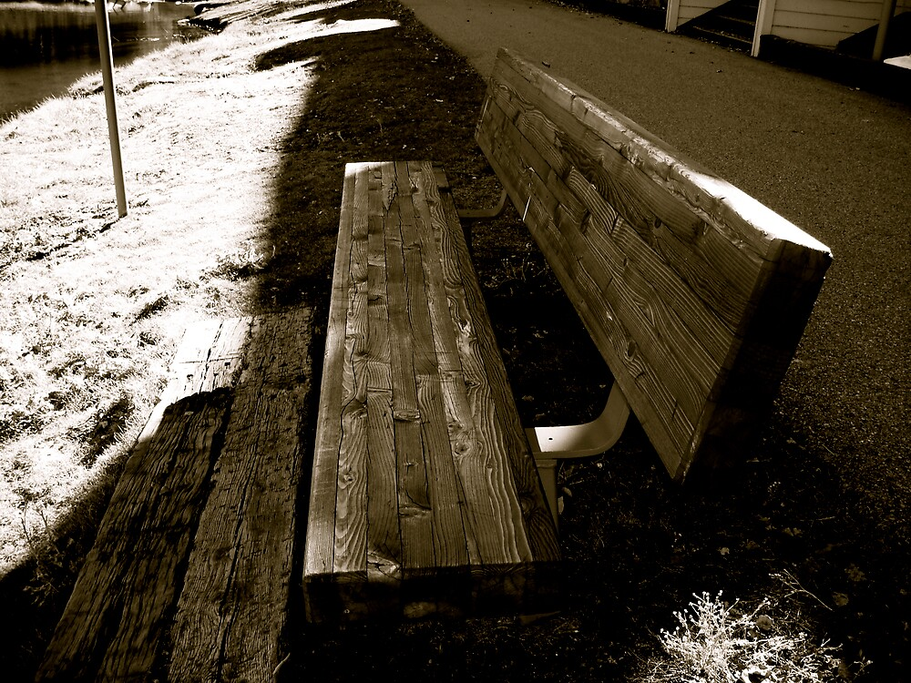 A Bench Less Saturated by diongillard