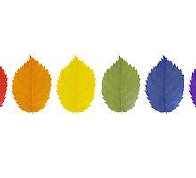 Pride Leaves by englishbayboys