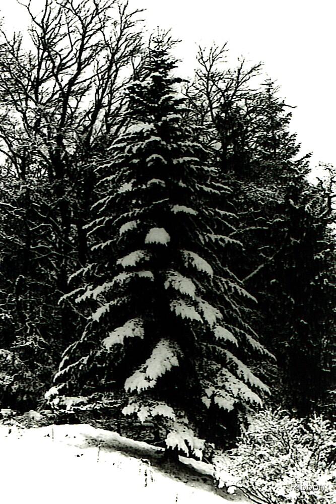 Christmas Tree by Ribbon