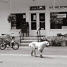 Post Office, Minton Tennessee by © Joe  Beasley IPA