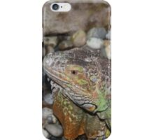 Reptile in Full Colour iPhone Case/Skin