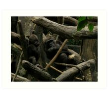 Gorilla and Baby Art Print