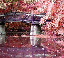 Autumn Bridge by Veronica Schultz