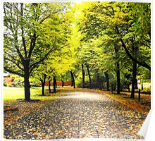 Colorful green and yellow fall trees, forest Poster