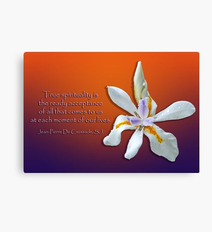 True Spirituality Canvas Print