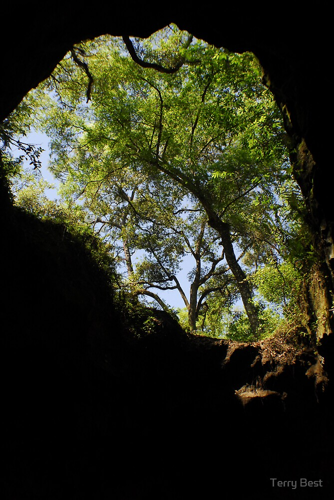 Cave Entrance by Terry Best