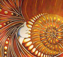 Ammonite Fragment by Deborah Holman