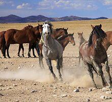 Running Wild by Gene Praag