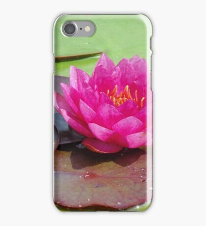 Water Lilies at the Brooklyn Botanic Garden 8/5/14 iPhone Case/Skin