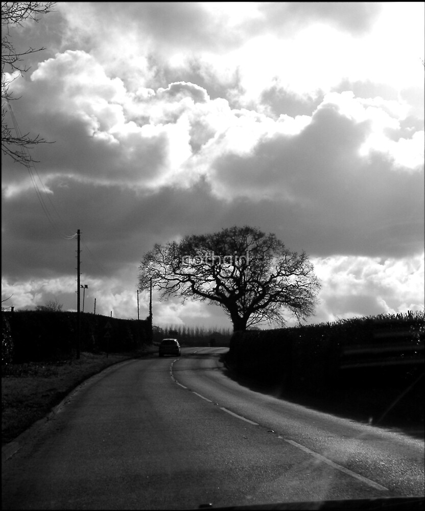 A road less travelled by gothgirl