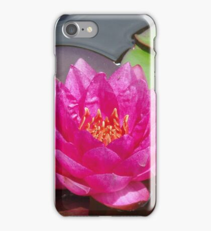 Water Lilies at the Brooklyn Botanic Garden 8/5/14 - 2 iPhone Case/Skin