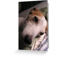 Lucy the Supermodel Greeting Card