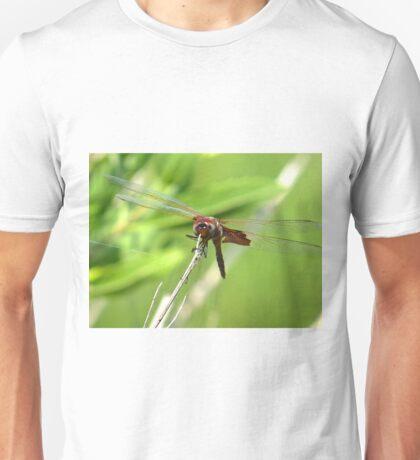 Jewelwing Dragonfly  (1407070565VA) Unisex T-Shirt