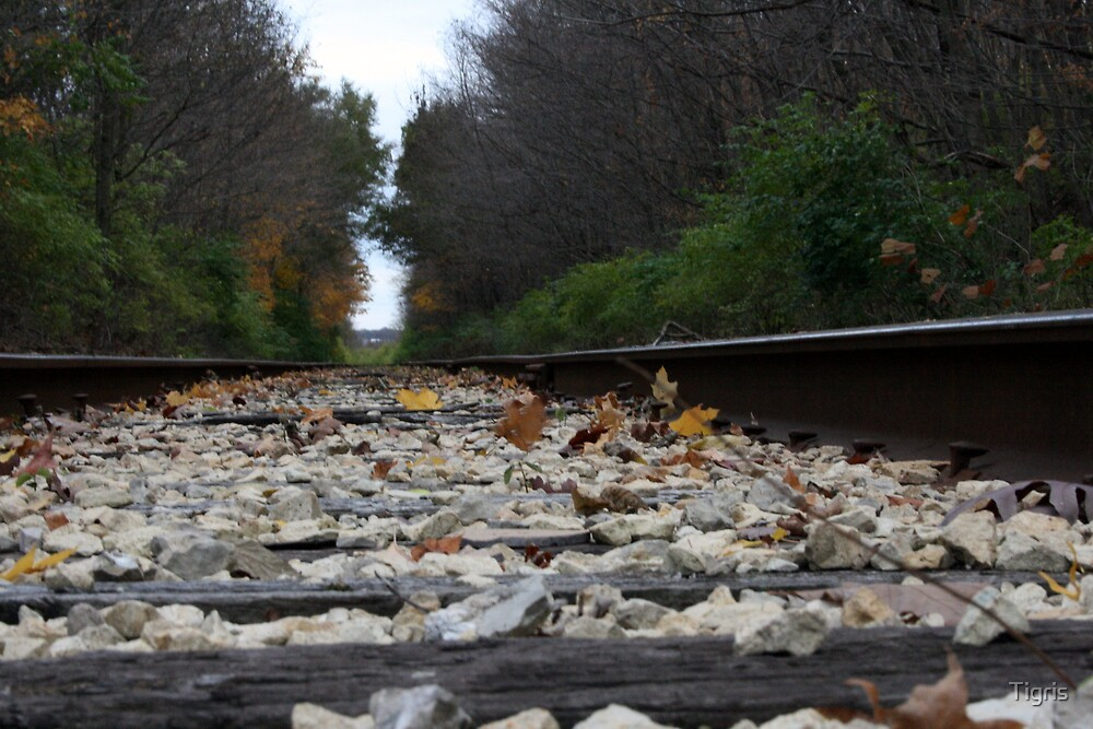 Railroad Tracks by Tigris
