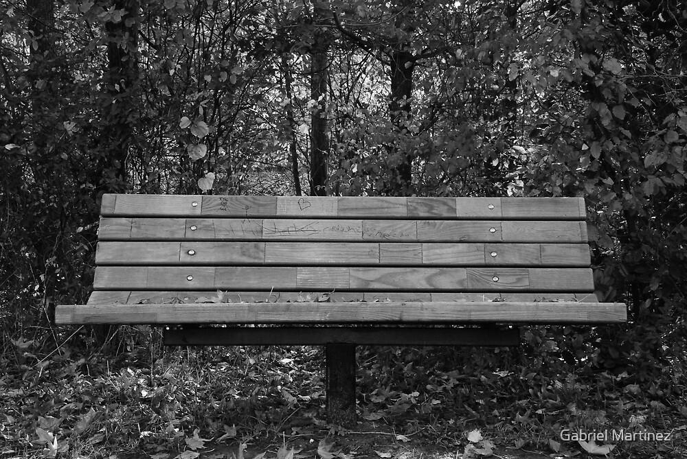 Bench by Gabriel Martinez