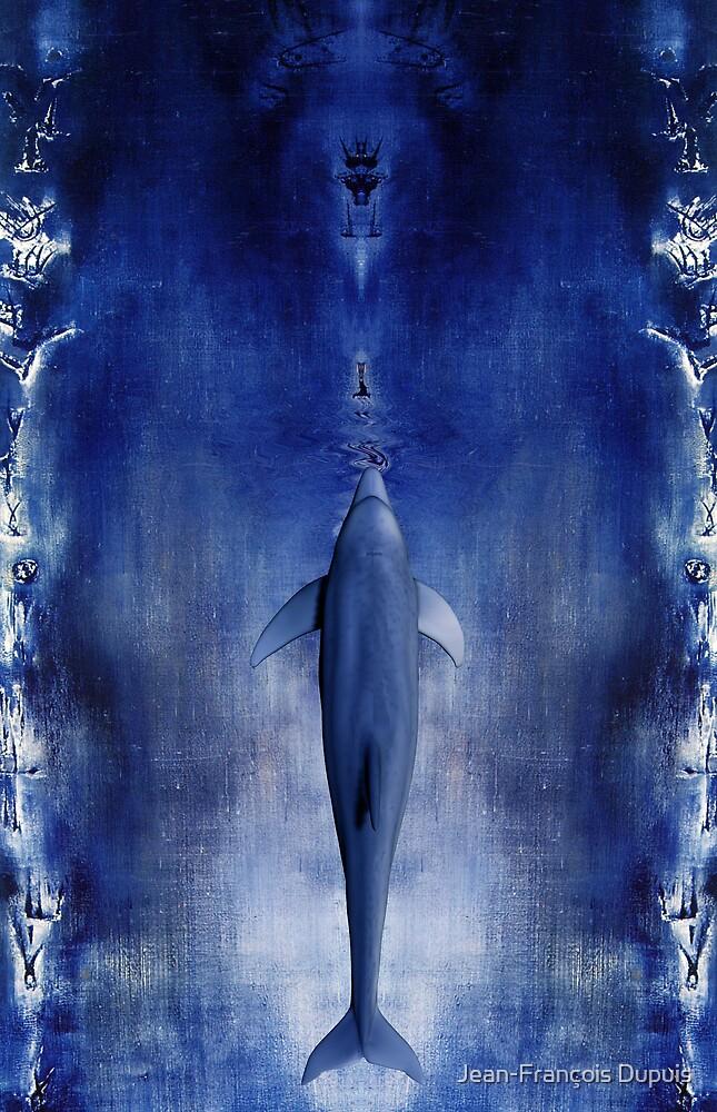 Dolphin by Jean-François Dupuis