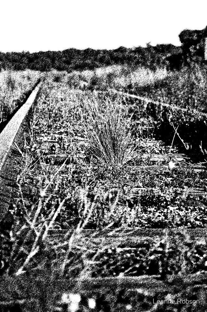 Stream Rail 2 by Leanne Robson