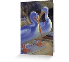 Pelicans #2 Greeting Card