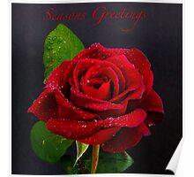 Red Rose - Season Greetings Poster