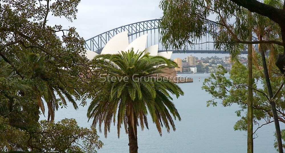 Opera House and Palms by Steve Grunberger