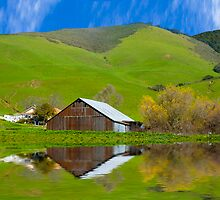 Old Barn, Jallama, CA. by Eyal Nahmias