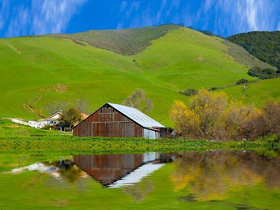 Old Barn, Jallama, CA. by Eyal Nahmias