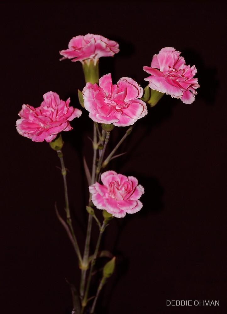 Pink Bouquet by DEBBIE OHMAN